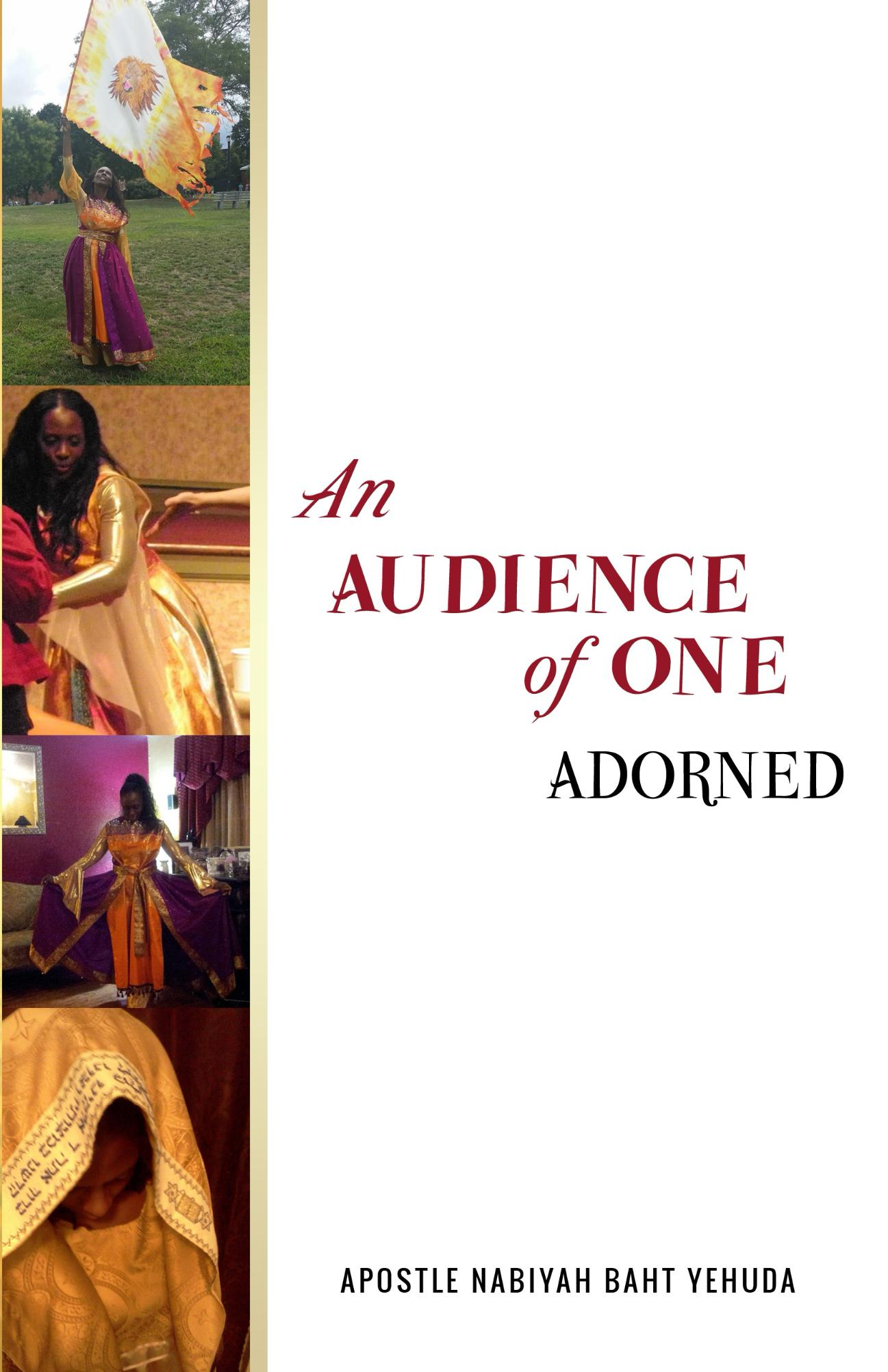 An_Audience_of_One_Cover_for_Kindlejpg